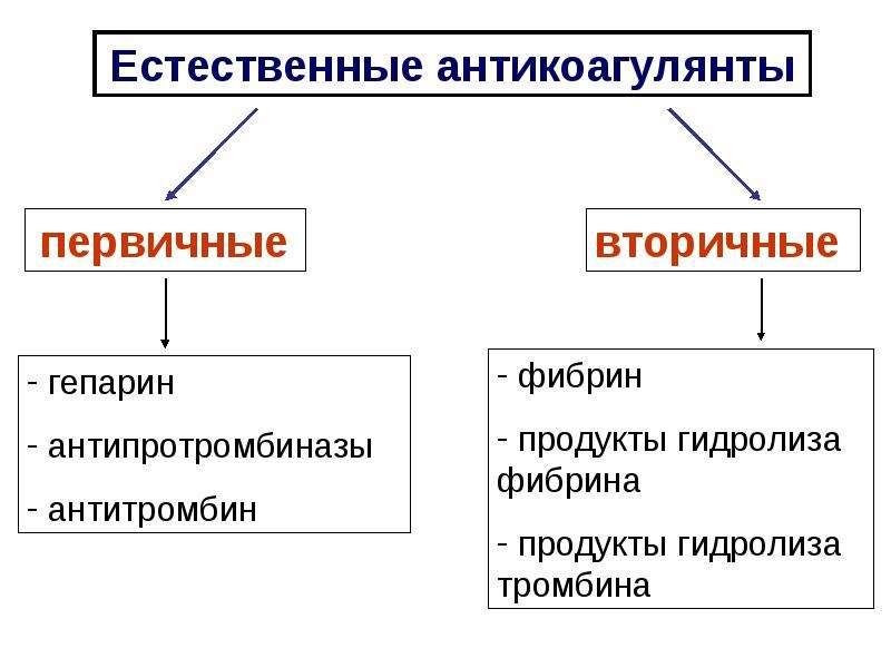 Физиологические основы свертывания и переливания крови, слайд 28