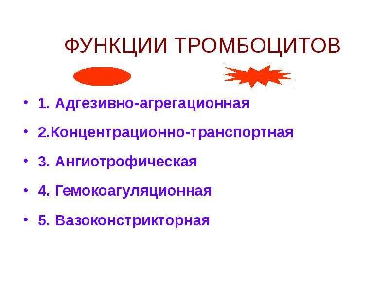 ФУНКЦИИ ТРОМБОЦИТОВ 1. Адгезивно-агрегационная 2. Концентрационно-транспортная 3. Ангиотрофическая 4