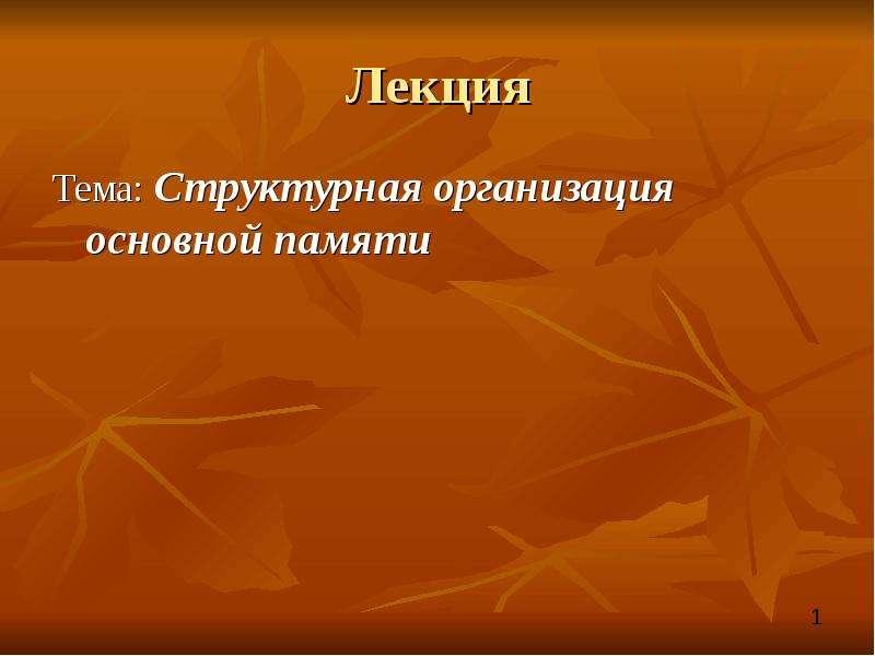 Презентация Структурная организация основной памяти