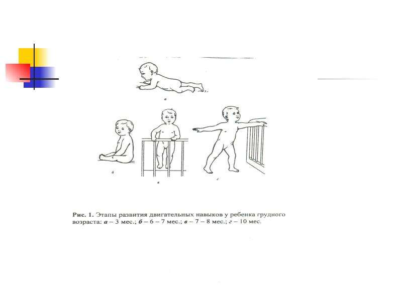 Возрастные особенности соматических функций, слайд 51