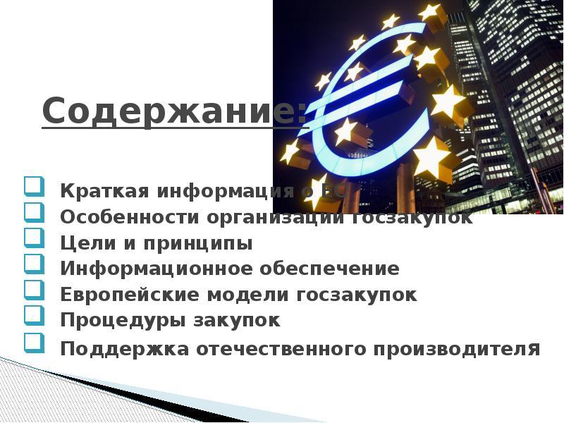 Содержание: Краткая информация о ЕС Особенности организации госзакупок Цели и принципы Информационно