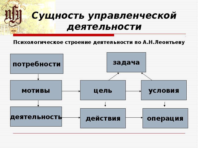 Сущность управленческой деятельности Психологическое строение деятельности по А. Н. Леонтьеву