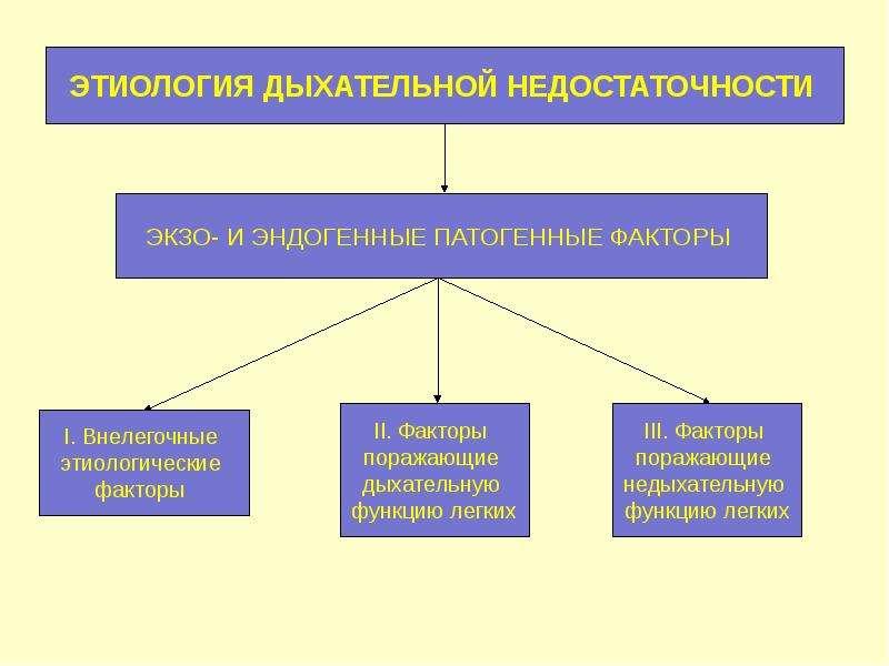 Патофизиология внешнего дыхания, слайд 4