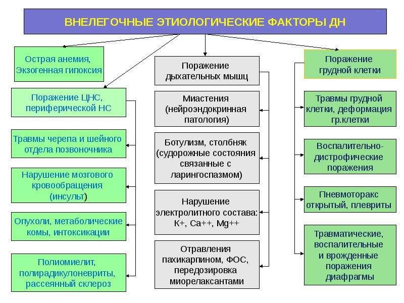 Патофизиология внешнего дыхания, слайд 5