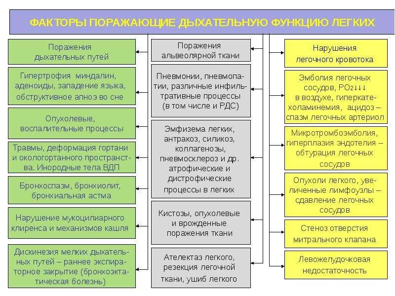 Патофизиология внешнего дыхания, слайд 6