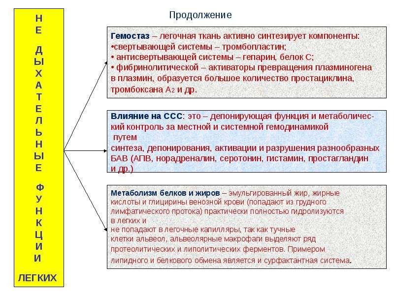 Патофизиология внешнего дыхания, слайд 8
