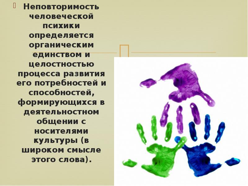 Неповторимость человеческой психики определяется органическим единством и целостностью процесса разв