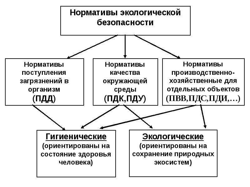 ГОРОДСКИЕ И ПРОМЫШЛЕННЫЕ ЭКОСИСТЕМЫ. ОЦЕНКА УРОВНЕЙ И НОРМИРОВАНИЕ ЗАГРЯЗНЕНИЯ, слайд 6