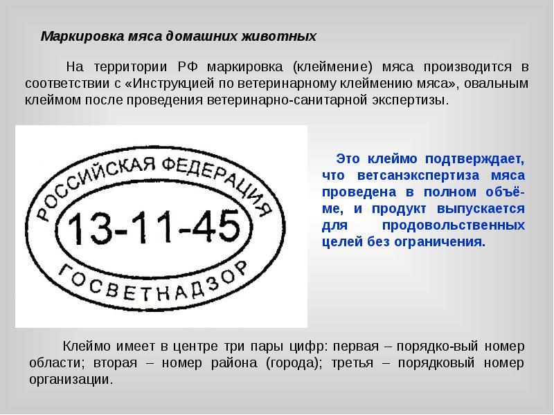 Должнстная инструкция руководителя фитнес клуба