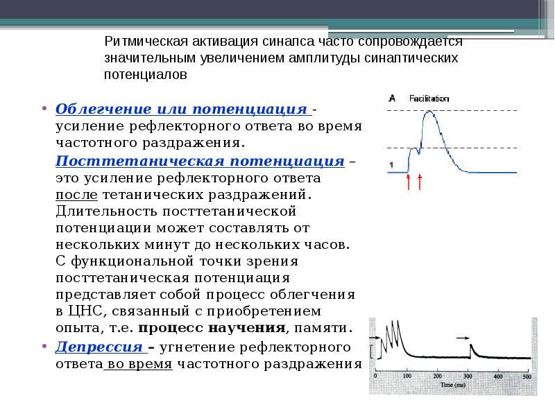 Облегчение или потенциация - усиление рефлекторного ответа во время частотного раздражения. Облегчен