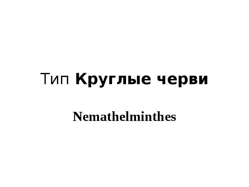 Презентация Тип Круглые черви Nemathelminthes