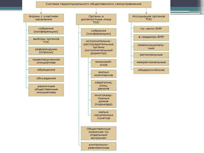 Осуществление территориального общественного самоуправления, слайд 9