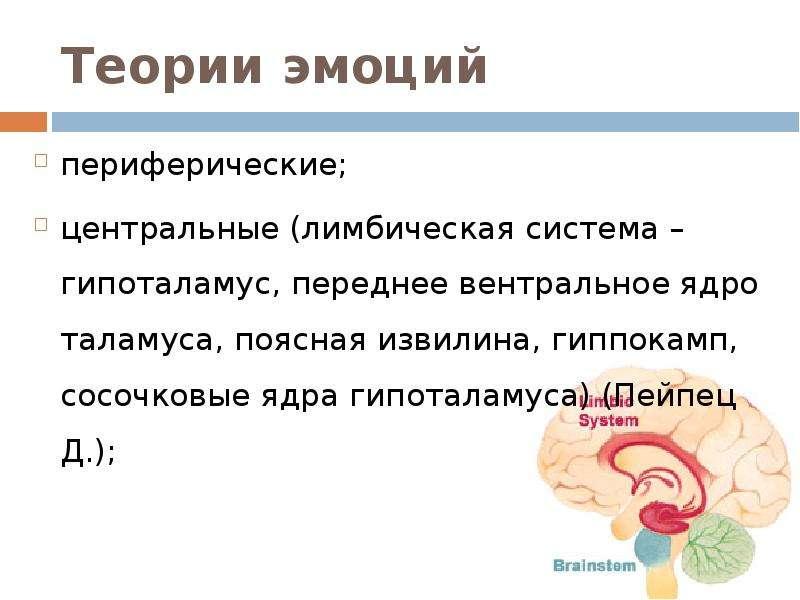 Теории эмоций периферические; центральные (лимбическая система – гипоталамус, переднее вентральное я