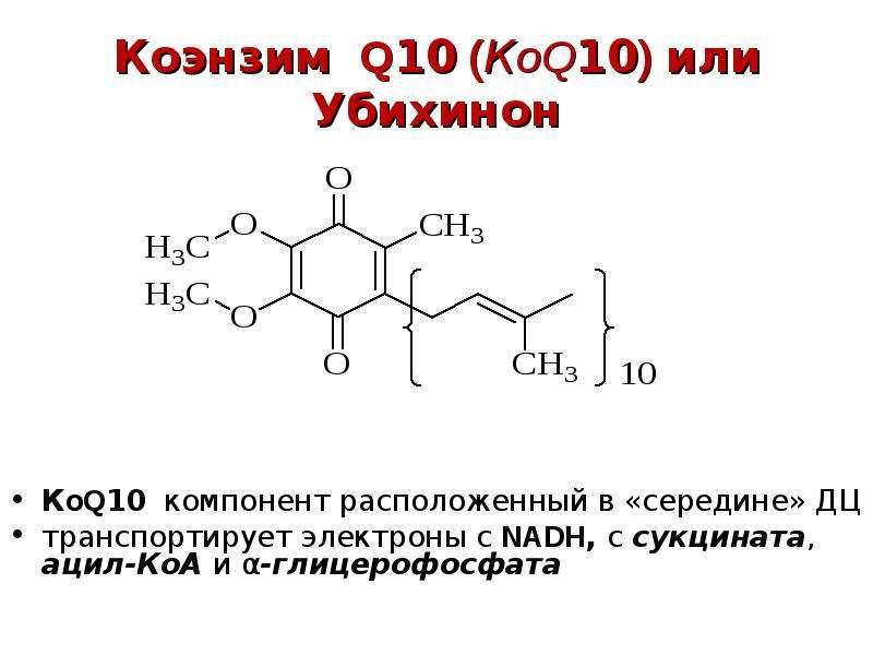 Коэнзим Q10 (КoQ10) или Убихинон КoQ10 компонент расположенный в «середине» ДЦ транспортирует электр