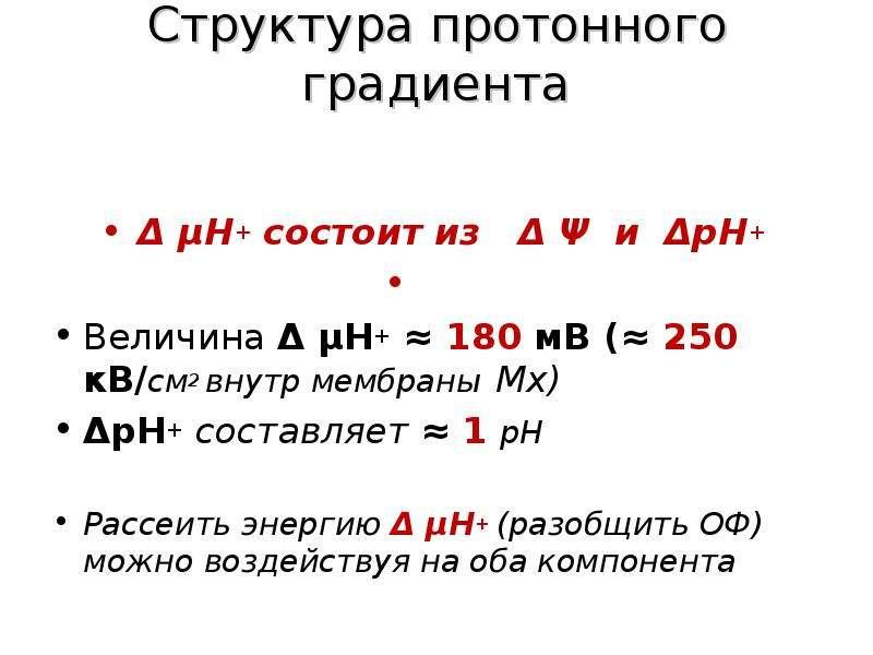 Структура протонного градиента Δ μН+ состоит из Δ Ψ и ΔрН+ Величина Δ μН+ ≈ 180 мВ (≈ 250 кВ/см2 вну