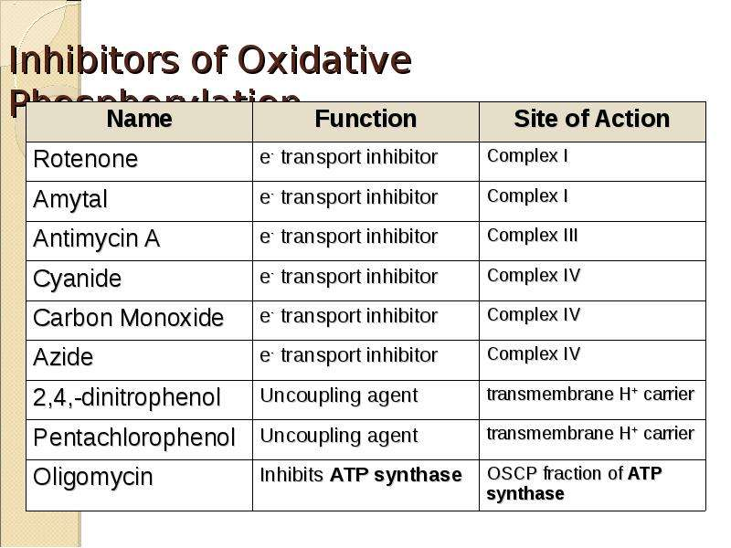 Inhibitors of Oxidative Phosphorylation