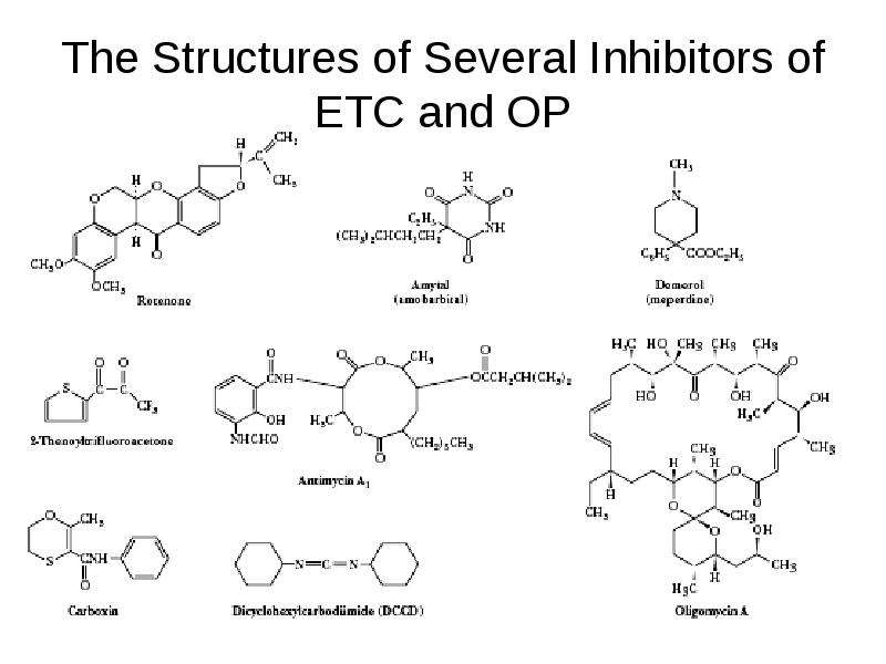 The Structures of Several Inhibitors of ETC and OP