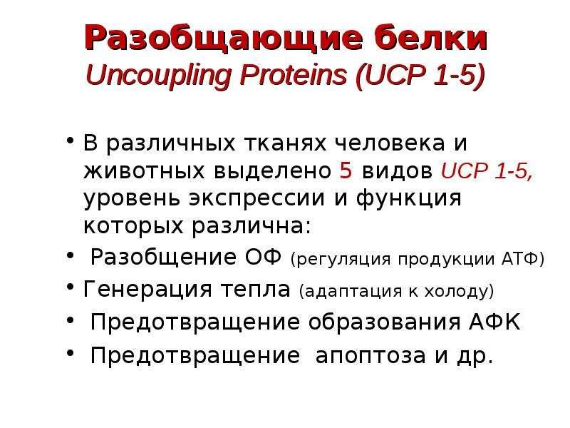 Разобщающие белки Uncoupling Proteins (UCP 1-5) В различных тканях человека и животных выделено 5 ви