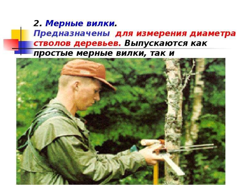 2. Мерные вилки. Предназначены для измерения диаметра стволов деревьев. Выпускаются как простые мерн