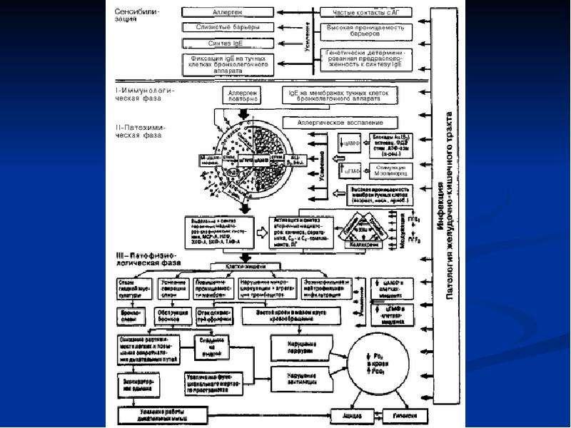 Лекарственные средства, применяемые при терапии бронхообструктивного синдрома (БОС), слайд 22