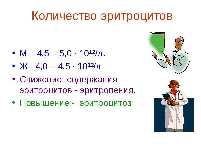 Количество эритроцитов М – 4,5 – 5,0 ∙ 10¹²/л. Ж– 4,0 – 4,5 ∙ 10¹²/л Снижение содержания эритроцитов