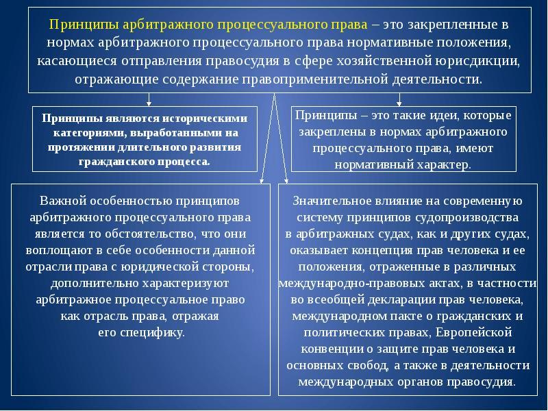 Принципы Арбитражного Процессуального Права Шпаргалка
