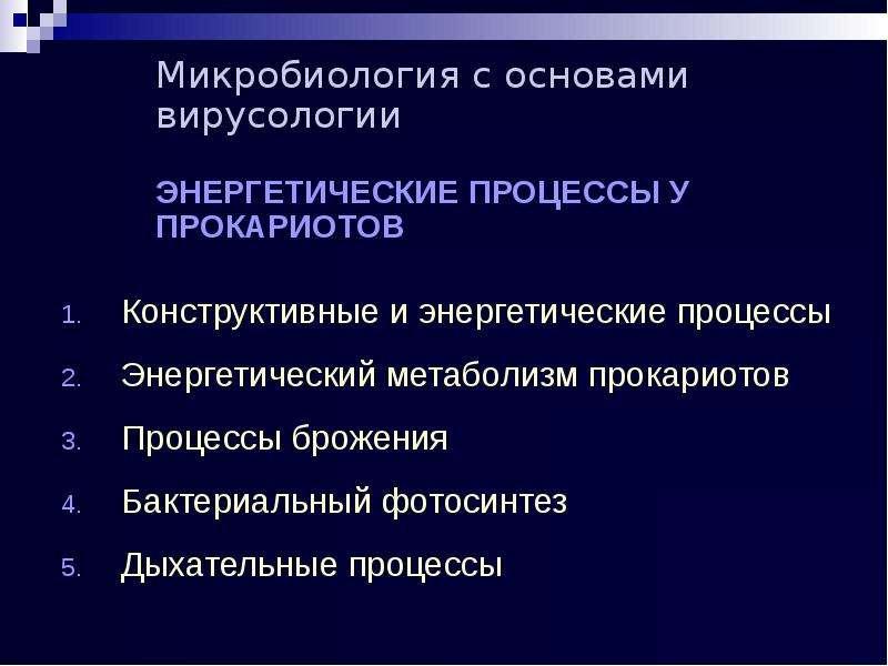 Презентация Энергетический метаболизм прокариотов