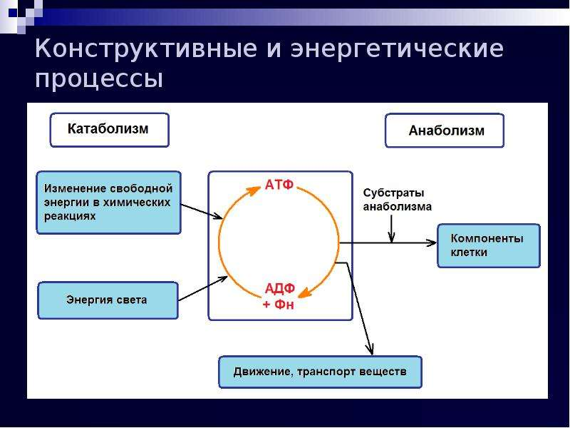 Конструктивные и энергетические процессы