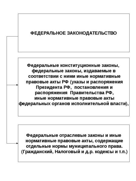 Опорные конспекты по курсу муниципального управления, слайд 25