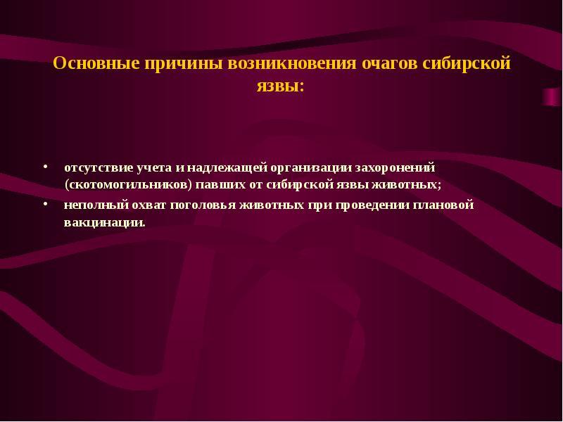 Основные причины возникновения очагов сибирской язвы: отсутствие учета и надлежащей организации захо