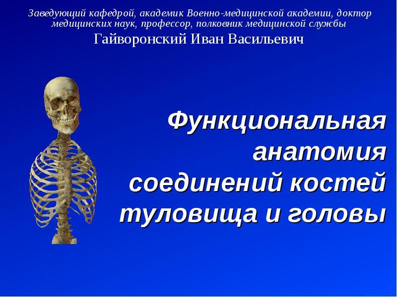 Презентация Функциональная анатомия соединений костей туловища и головы