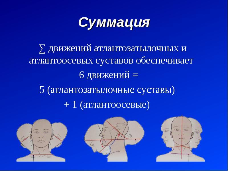 Суммация ∑ движений атлантозатылочных и атлантоосевых суставов обеспечивает 6 движений = 5 (атлантоз