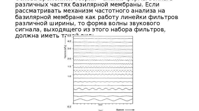 Основа временной теории – анализ формы волны в различных частях базилярной мембраны. Если рассматрив