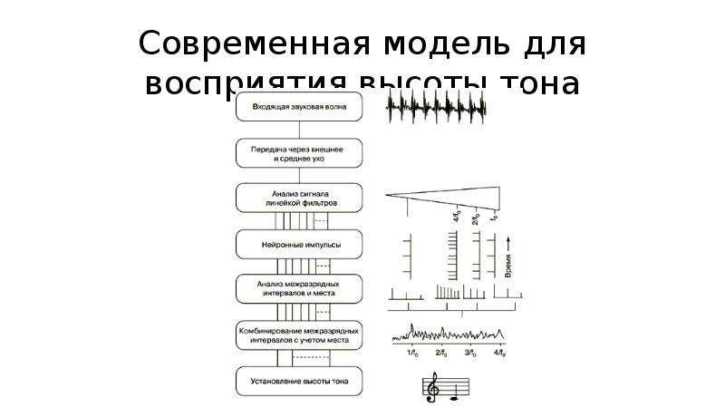 Современная модель для восприятия высоты тона