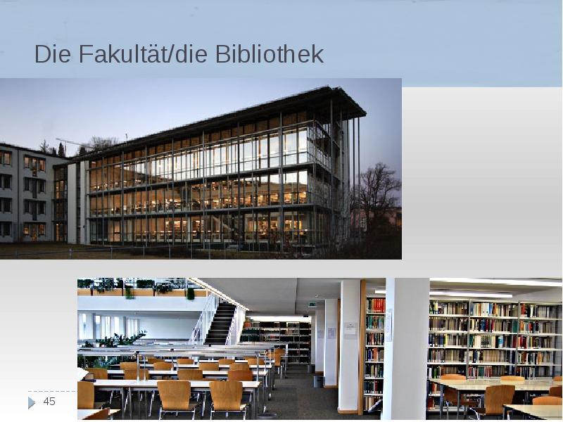 Die Fakultät/die Bibliothek