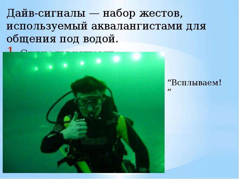 скромные габариты жесты аквалангистов картинки заказ одинцово