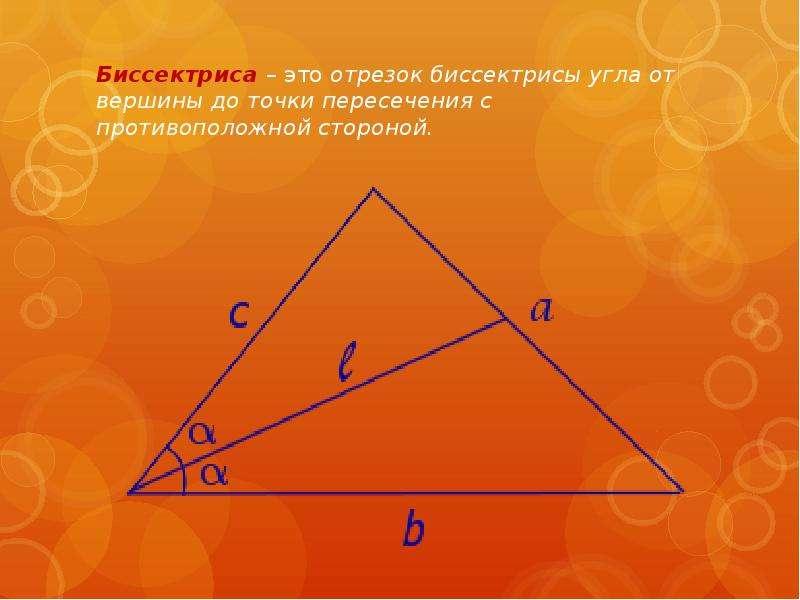 Биссектриса – это отрезок биссектрисы угла от вершины до точки пересечения с противоположной стороно