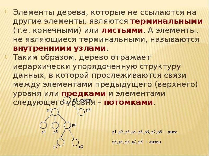 Элементы дерева, которые не ссылаются на другие элементы, являются терминальными (т. е. конечными) и
