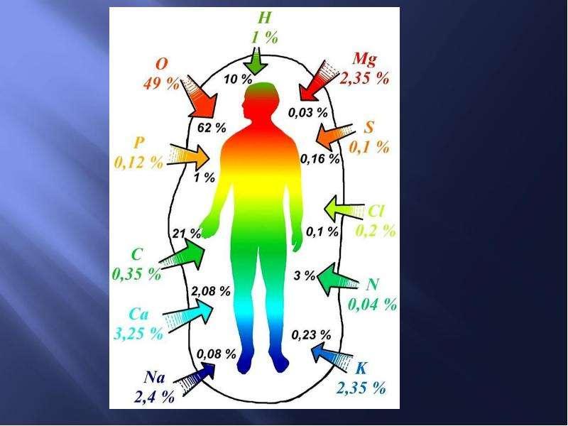 Биогенные элементы. Классификация. Топография биогенных элементов в организме человека, слайд 15