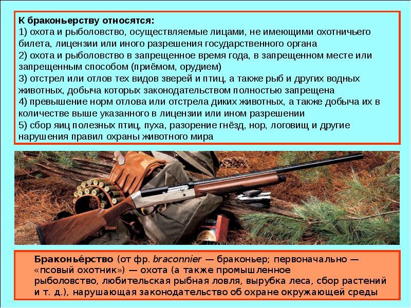Браконье́рство (от фр. braconnier — браконьер; первоначально — «псовый охотник») — охота (а также пр