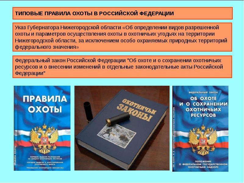 ТИПОВЫЕ ПРАВИЛА ОХОТЫ В РОССИЙСКОЙ ФЕДЕРАЦИИ