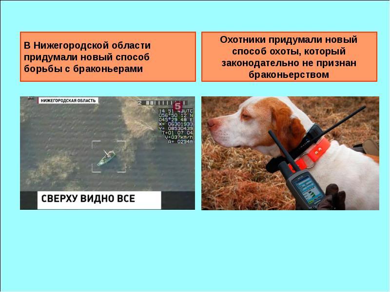 В Нижегородской области придумали новый способ борьбы с браконьерами