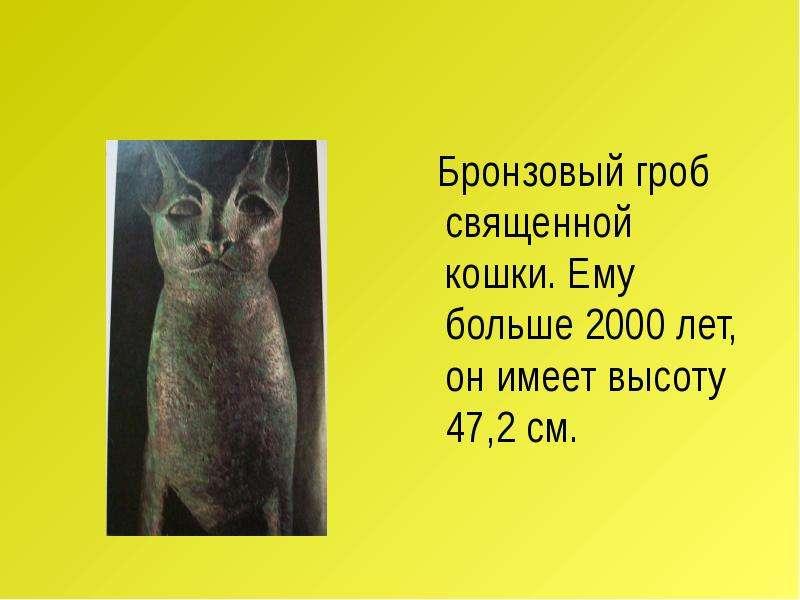 Бронзовый гроб священной кошки. Ему больше 2000 лет, он имеет высоту 47,2 см. Бронзовый гроб священн