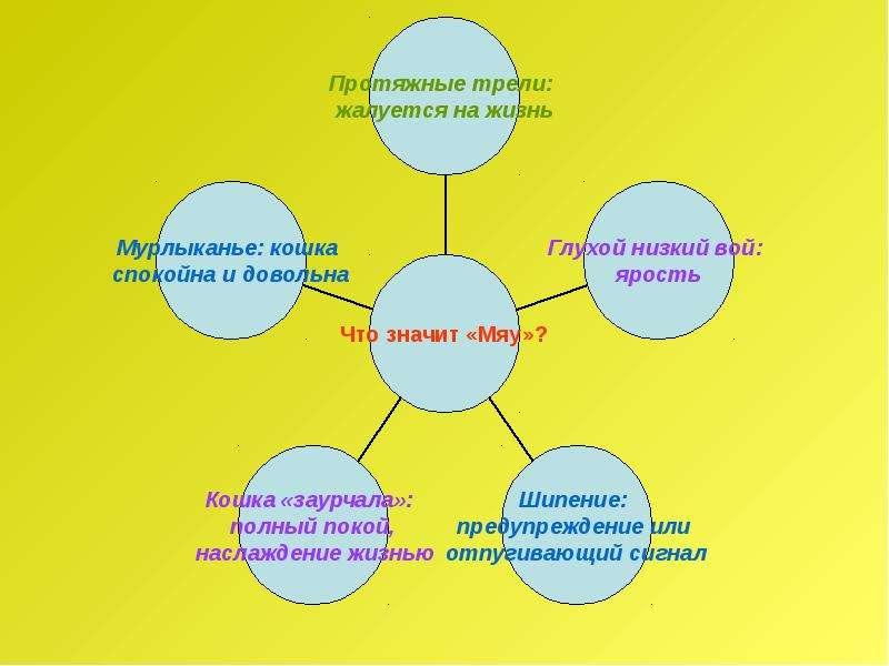 Рассказ по воображению. Рассказ от лица животного. Интегрированный урок русского языка и биологии, слайд 24