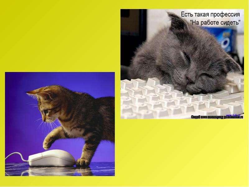 Рассказ по воображению. Рассказ от лица животного. Интегрированный урок русского языка и биологии, слайд 29
