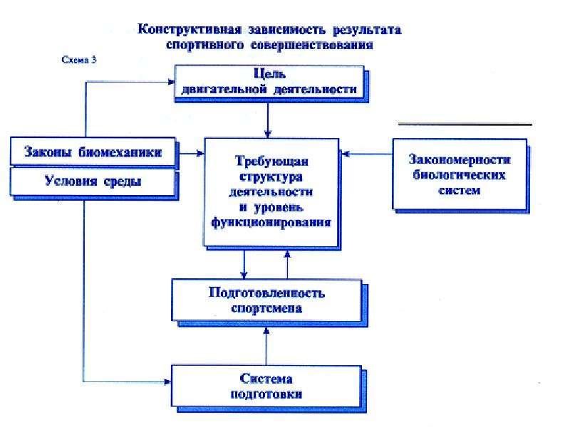 Физиология спортивной деятельности. Физиологические основы обучения и совершенствования спортивной техники, слайд 28