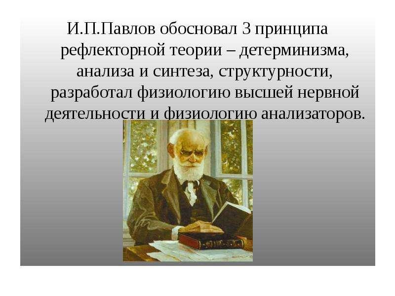 И. П. Павлов обосновал 3 принципа рефлекторной теории – детерминизма, анализа и синтеза, структурнос