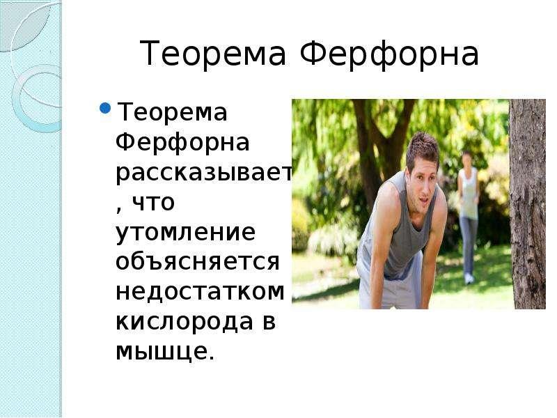 Теорема Ферфорна Теорема Ферфорна рассказывает , что утомление объясняется недостатком кислорода в м