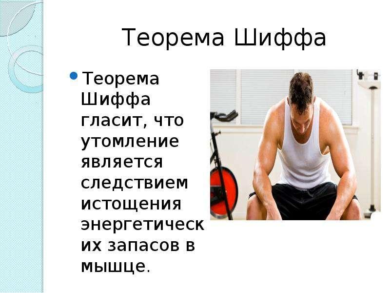 Теорема Шиффа Теорема Шиффа гласит, что утомление является следствием истощения энергетических запас