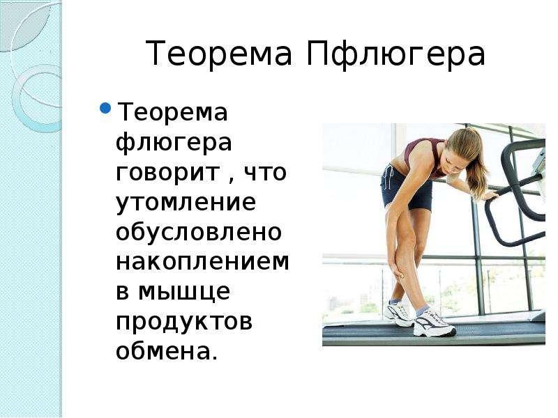 Теорема Пфлюгера Теорема флюгера говорит , что утомление обусловлено накоплением в мышце продуктов о